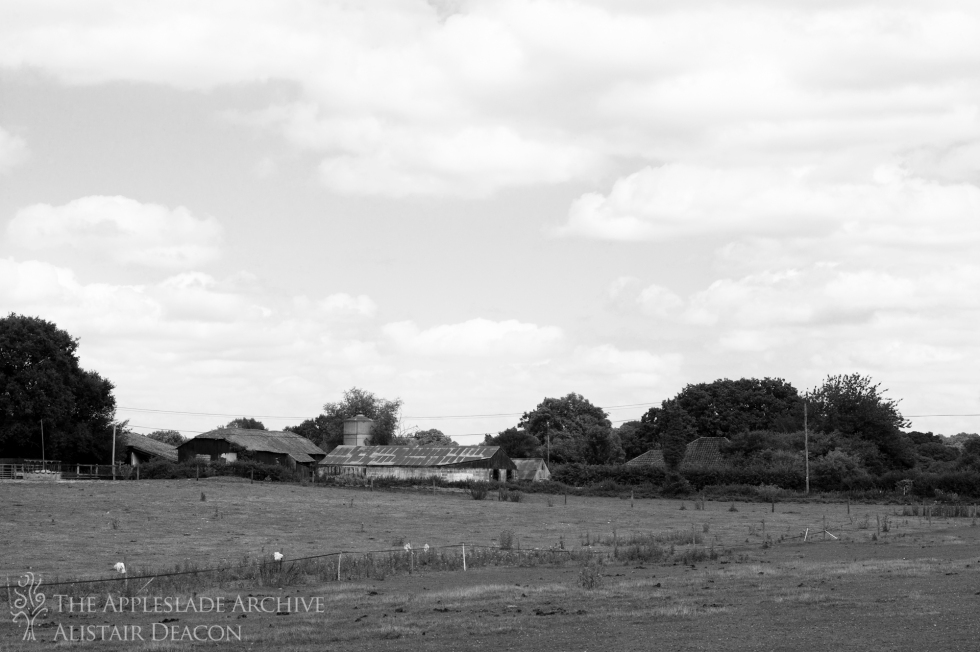 Toms Farm, Linwood, New Forest, Hampshire, 11th Aug 2013