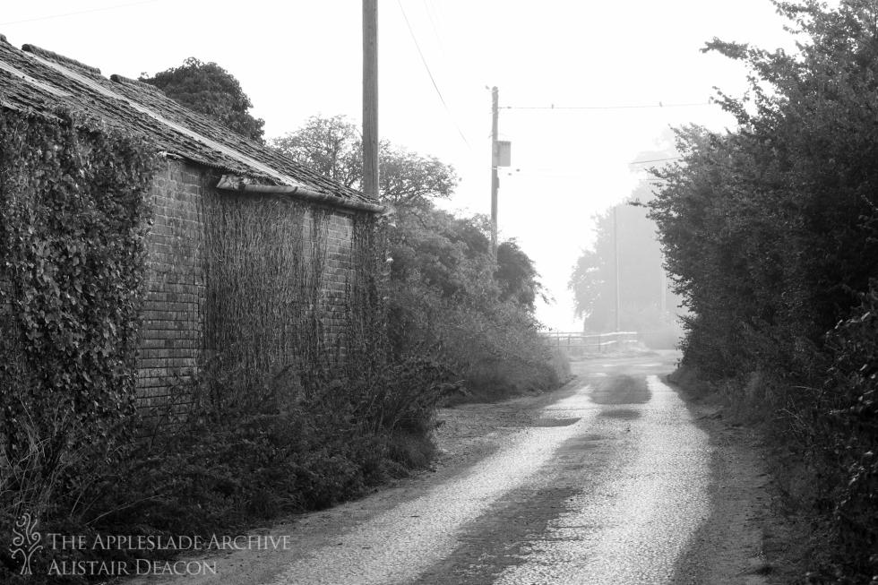 London Lane, Avon, Dorset, 28th Aug 2013