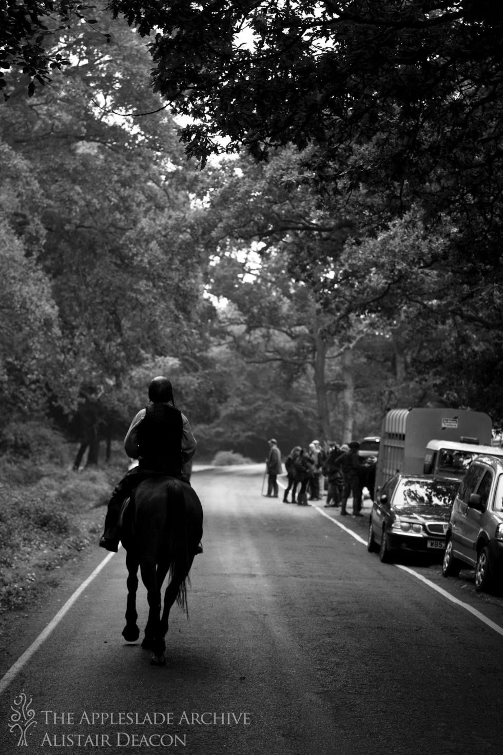 Andrew Napthine riding out on the Stoney Cross Drift, Nr. Stoney Cross, New Forest, Hampshire, 18th Oct 2013