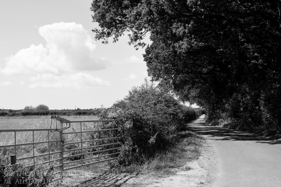 London Lane, Avon, Dorset, 20th Aug 2013