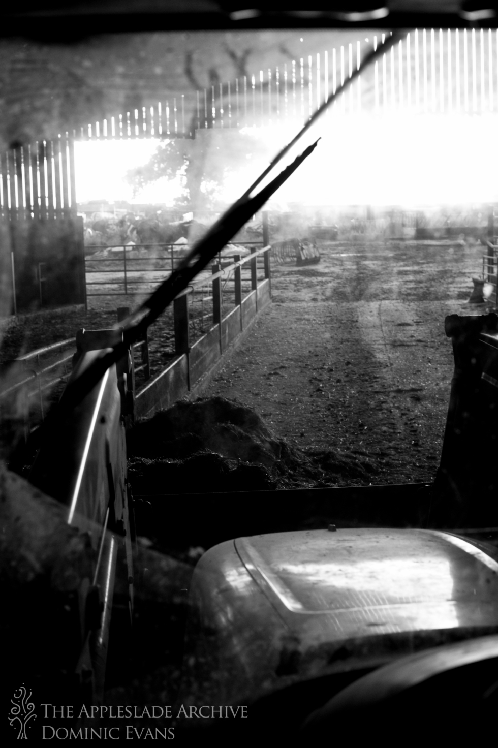 Using a tractor to pick up cattle feed, Ayles Farm, Avon, Dorset, 15th Sept 2013