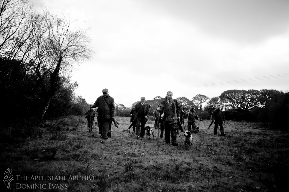 The guns walk to their positions before the second drive, St. Enoder, Nr. Fraddon, Cornwall, 9th Nov 2013