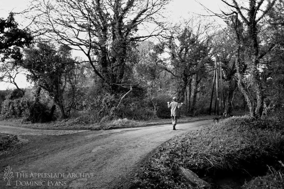 A gun walks along the road, Ennis Barton, St. Enoder, Nr. Fraddon, Cornwall, 25th Jan 2014