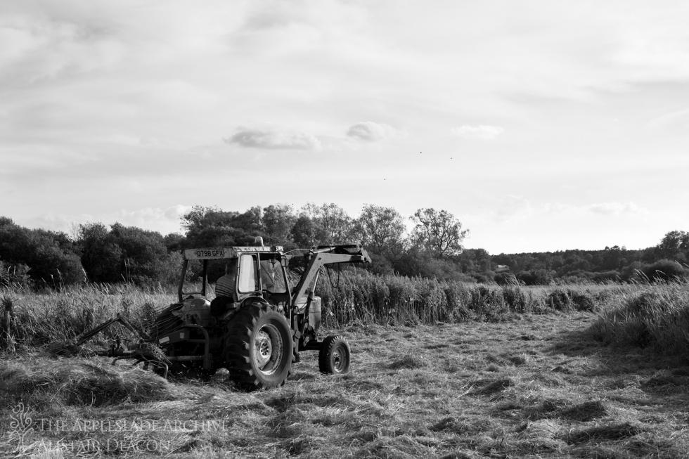Richard Deacon turning grass, Westover Farm, Ringwood, Hampshire, July 2014