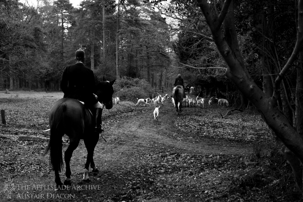 The New Forest Hounds riding out at Longcross, New Forest, Hampshire, December 2014
