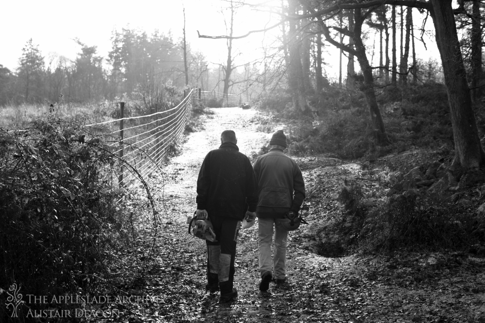 Richard Deacon and Kevin Gover, Appleslade Wood, New Forest, Hampshire, December 2014